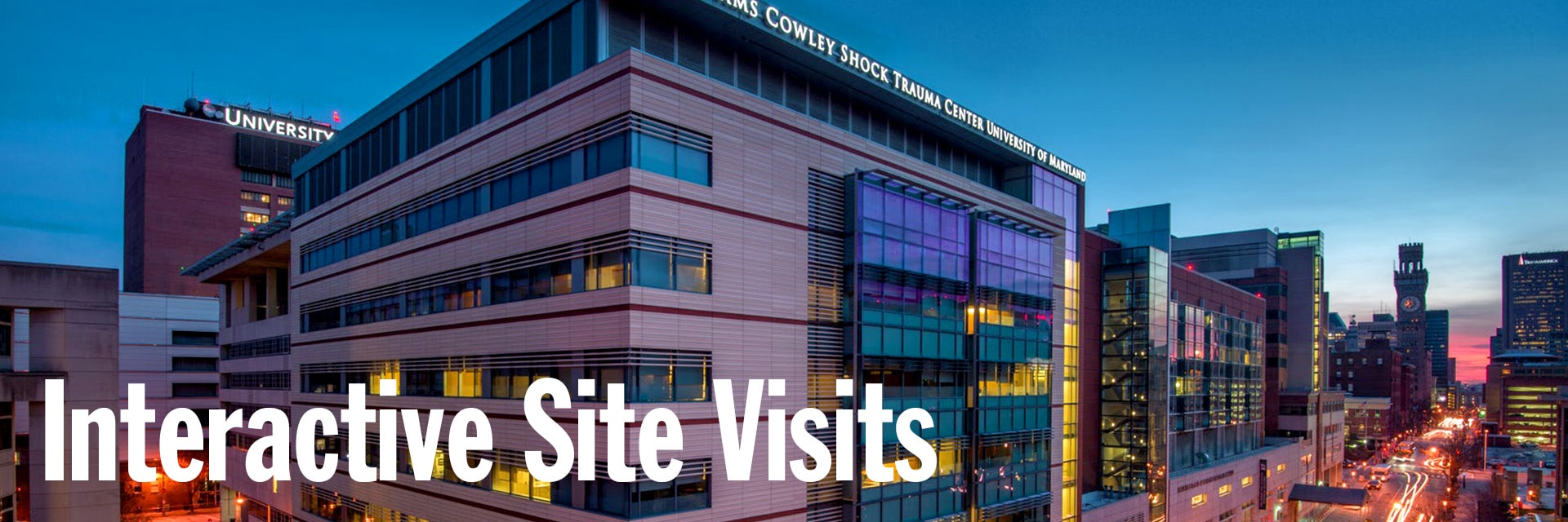 Interactive Medical Site Visits